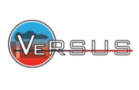 VeRSUS: Open-Vent Volcano Remote Sensing Monitoring using Spaceborne Imagery