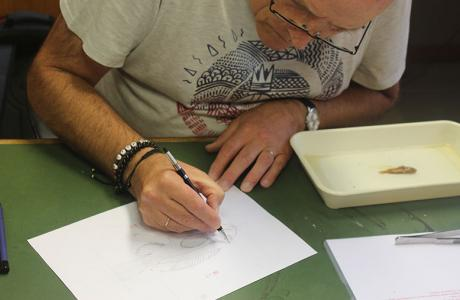 Scientific illustrator Alain Reygel at work