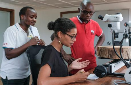 Wood biology laboratory, first of its kind in Sub-Saharan Africa, opens in Democratic Republic of the Congo